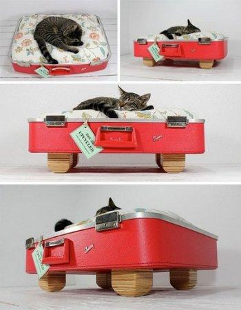 Лежак для кошки из старого чемодана