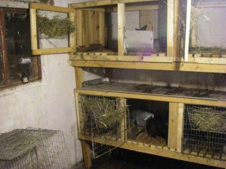 Как сделать двухэтажную клетку для кроликов